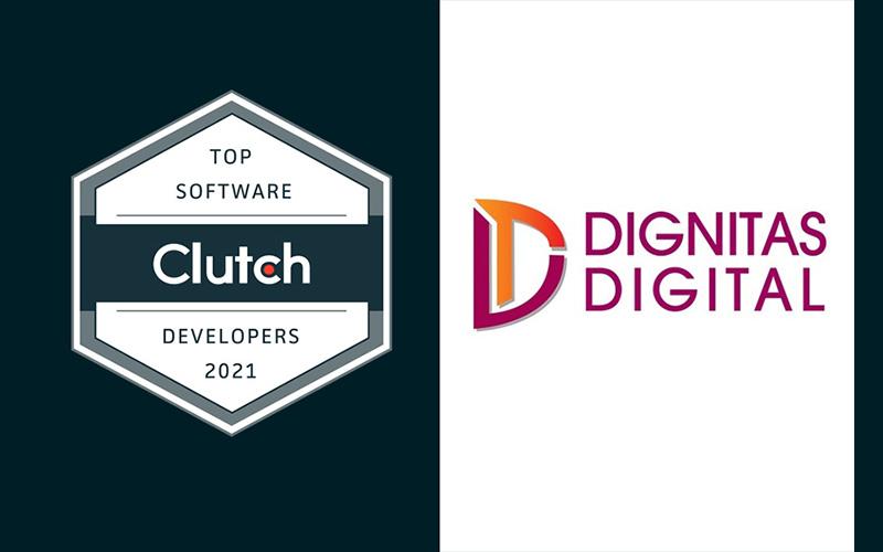 top software developer 2021